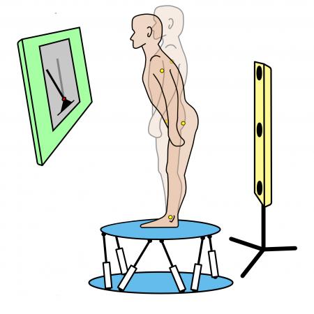 Human sensorimotor learning for humanoid robot skill synthesis