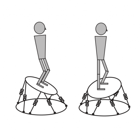 Analysis of musculoskeletal system responses to pertrubations during standing posture