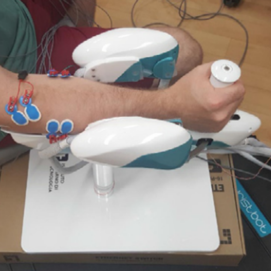 Characterizing forearm muscle activity in young adults during dynamic wrist flexion–extension movement using a wrist robot