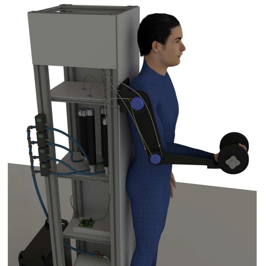 Assistive Arm-Exoskeleton Control Based on Human Muscular Manipulability